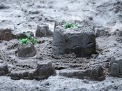 banques aussi jouent dans sable