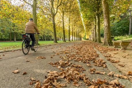 Nos balades de l'automne
