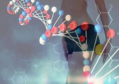 PERTE de POIDS : Le succès du régime dépend aussi de l'ADN