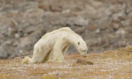 La Terre pourrait se réchauffer plus vite que prévu
