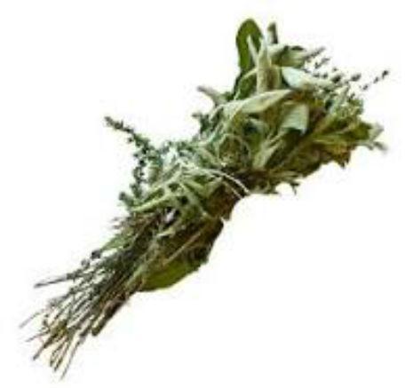 Les herbes aromatiques (1)