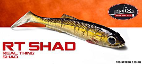 "RT SHAD 3,5"" (Molix)"