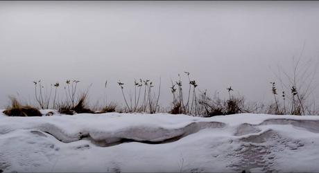 Frost : voyage de noces en enfer