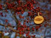 Comment attirer consommateurs pour Noël?