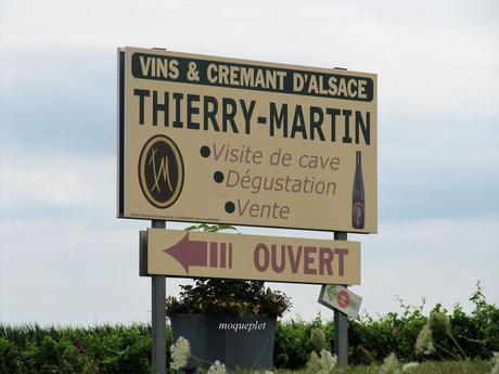 La France - L'alsace et son vignoble