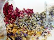 recettes shampoings bio, maison, plantes