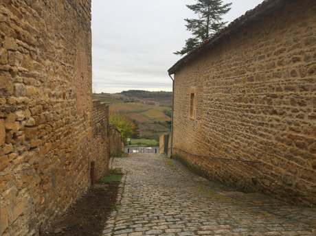 Carte postale d'Oingt en Beaujolais
