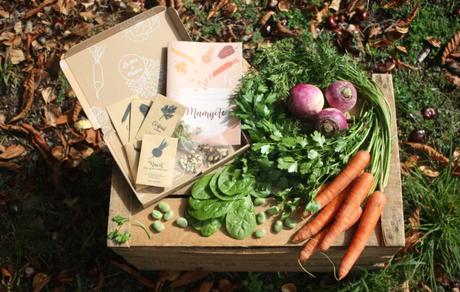 Ma sélection d'idées de cadeaux écolo et naturels pour Noël