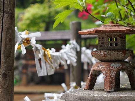 Décoration à faire pour le Nouvel An, oracle divinatoire, arbre de fortune