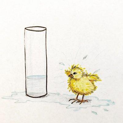 Poussin dans un verre d'eau