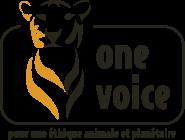 Joyeux Noël : association One Voice