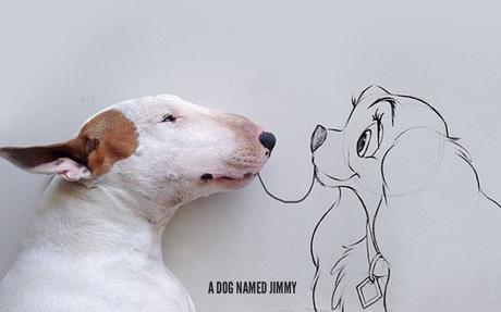 Jimmy the Bull : un chien, un mur blanc et un feutre noir