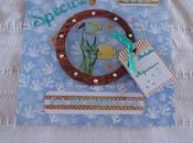 Album aquarium Rochelle pages