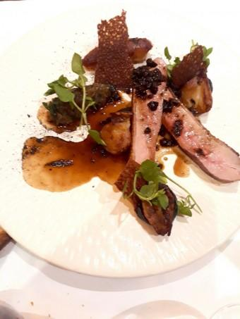 Canard, helianthis © Gourmets&Co