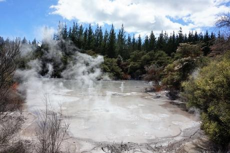 Nouvelle-Zélande : Rotorua / wai-o-tapu