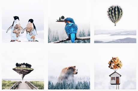 Instagram, Pic et Pic et Colegram #6