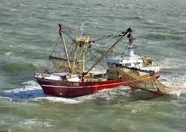 Le parlement européen vote l'interdiction totale de la pêche électrique
