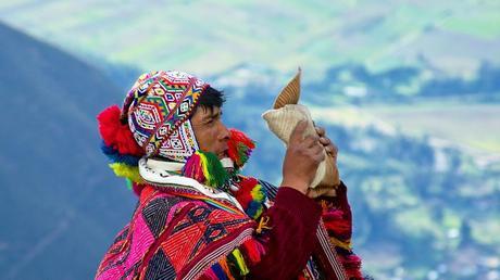 « DES ARAIGNEES ET DES FORÊTS ».RETOUR DE L'ANIMISME ET PENSEE ECOLOGIQUE.(4)