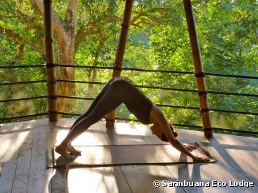 Sarinbuana Eco Lodge, pour une retraite yoga...