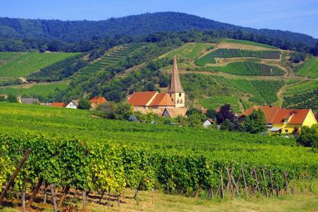 Niedermorschwihr, Alsace © French Moments