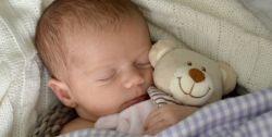 20 adorables doudous en coton bio pour bébé