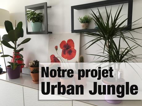 Projet Urban Jungle