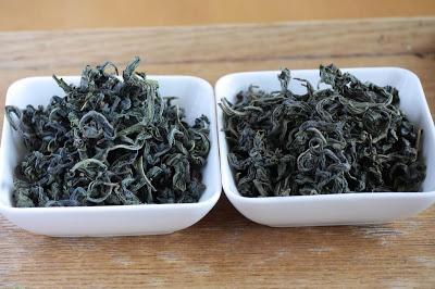 Deux wulong de Morokozawa, cultivar Kanaya-midori avec et sans torréfaction