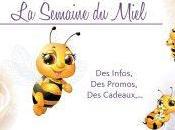 Zoom miel produits ruche
