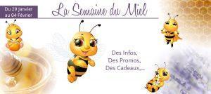 Zoom sur le miel et les produits de la ruche