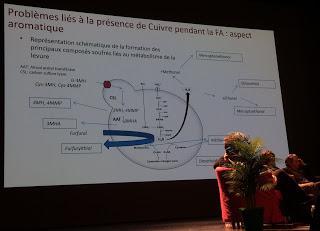 Matinée oenologues 2017.