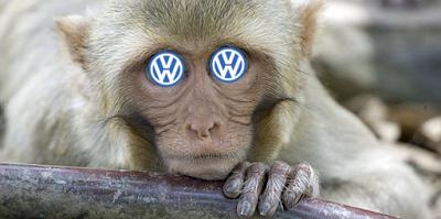 La chambre à gaz de Volkswagen