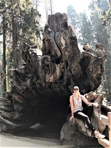 Les Parcs nationaux de Sequoia et Kings Canyon en Californie
