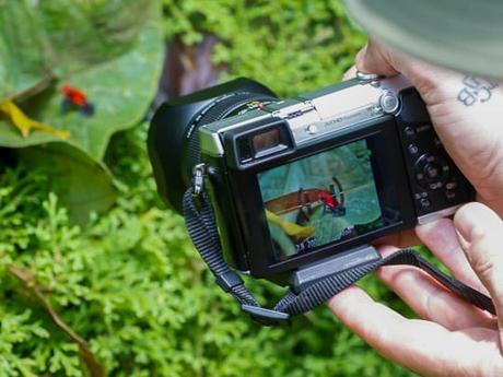 Spéciale Photographes : Planifier le parfait voyage photo au Costa Rica (partie 2)