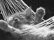 Comment méditer pour dormir