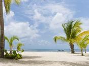 Creole Trip voyage Guadeloupe avec supplément d'âme