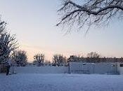 1467. Jours neige