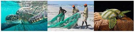 Aidez les artistes aborigènes de Pormpuraaw à sauvegarder la faune marine