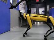 Robot chien Boston Dynamics