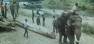 Vengeance en Thailande (Da di shuang ying) 1973 film complet en français