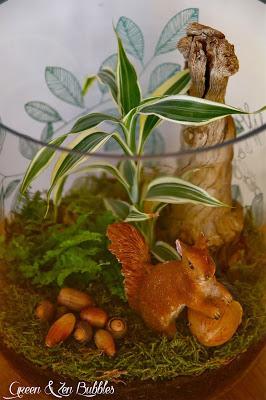 DIY : mon jardin miniature