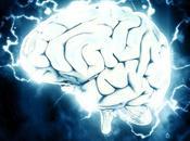 Quelques principes fondamentaux sciences cognitives pour pédagogie