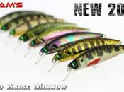 Zero Arise Minnow (Adam's)