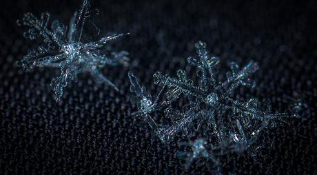 4 idées de photo macro en hiver