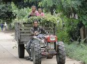 Kubota thaïlandais multi-délires (vidéos)