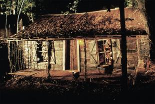 [Dossier] 14 films d'horreur qui se déroulent dans les bois à voir absolument