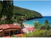 Envie connaître hiver exotique Pani pwoblem, allez Martinique
