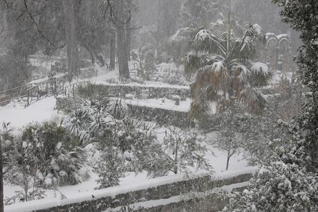 Neige à Montpellier