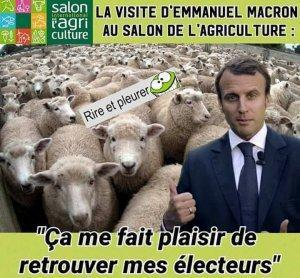 France is back…