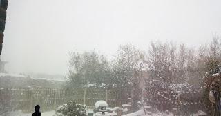 Quelques photos hivernales.
