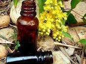 Tout huiles essentielles